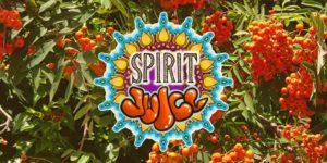 Spirit Juice: Autumn Equinox Day Festival @ Open Source Arts