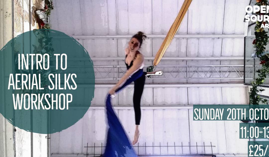 Introduction to Aerial Silks Workshop
