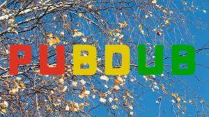 Cancelled: Pubdub 03-04-20 with UK Dub Squad